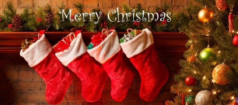 christmas-tree_large